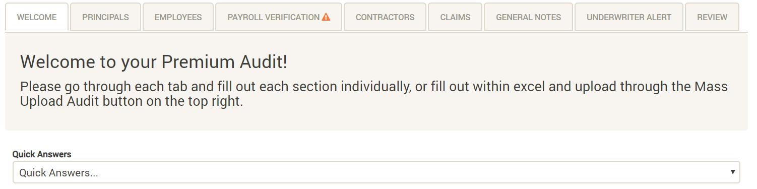 Premium Audit UI
