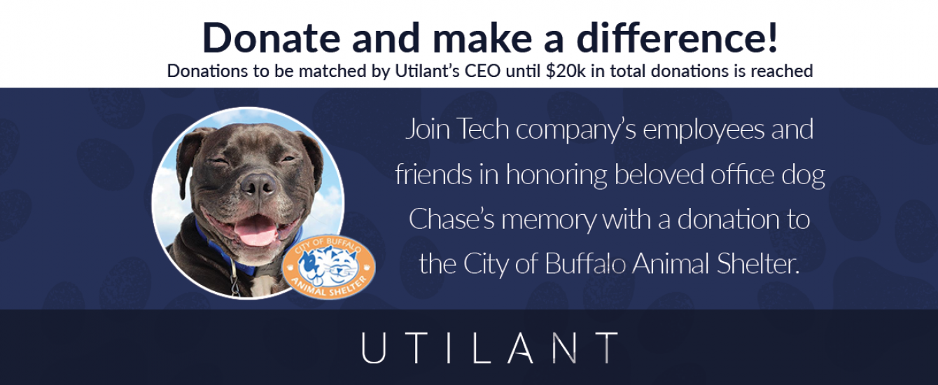Buffalo Technology Company 'Holiday Pet Drive' results in a $15,000 plus Donation to Friends of the City of Buffalo Animal Shelter
